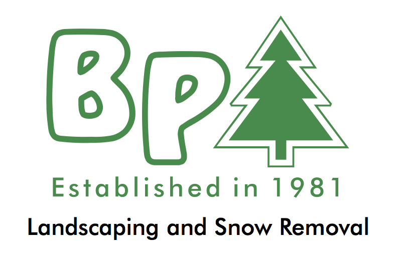 BP Landscaping and Snow Removal